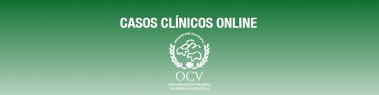 Caso clínico - Avicultura (granja de broiler)